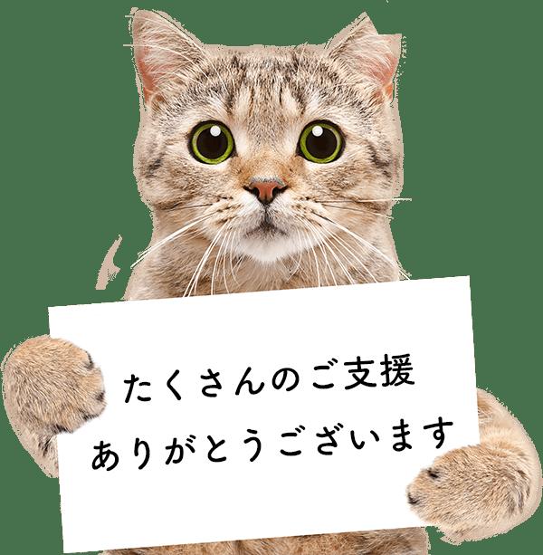 たくさんのご支援ありがとうございます